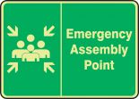 Glow-In-The-Dark Safety Sign: Emergency Assembly Point