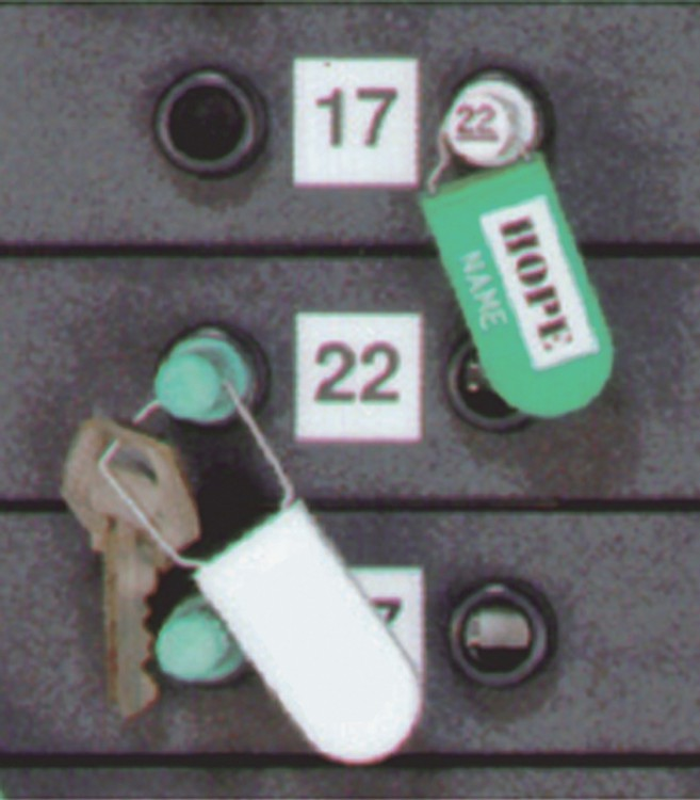 Access Plug