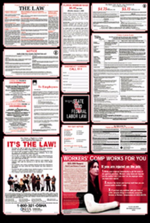 FEDERAL-STATE COMBO LABOR LAW POSTER - SPANISH