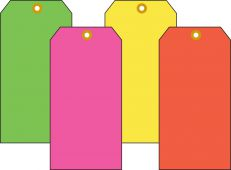 - Fluorescent Blank Cardstocks Tags