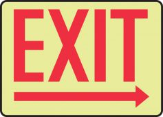 - Glow-In-The-Dark Safety Sign: Exit (Right Arrow)