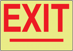 - Glow-In-The-Dark Safety Sign: Exit (with Arrowheads)