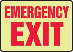- Glow-In-The-Dark Safety Sign: Emergency Exit