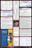 - Posters: Combo State, Federal And OSHA Labor Law (Spanish)