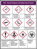 - GHS Pictogram Poster: GHS - Hazard Pictograms and Related Hazard Classes