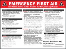 - Safety Posters: Emergency First Aid - Instructions